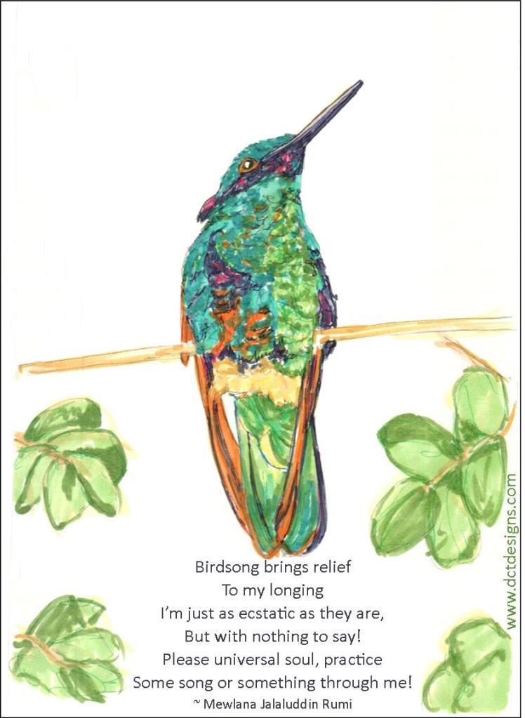 Monday Meditation ~ BirdSong