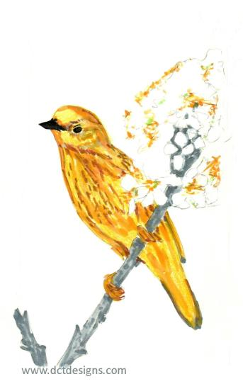 MM-Bird1